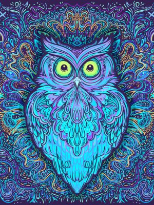 Dimensional-Owl-hover-image