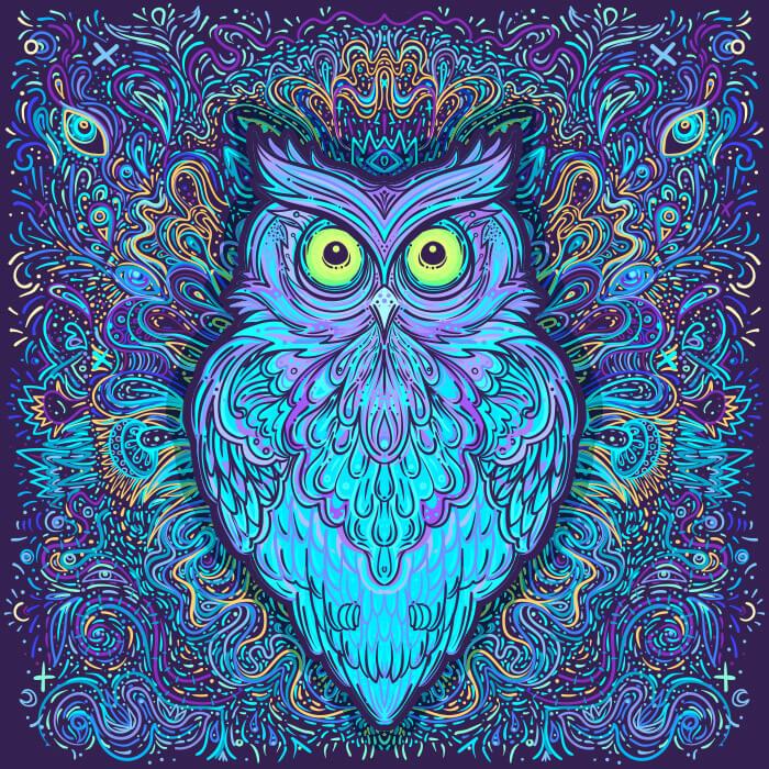Interdimensional Owl Bedding Set